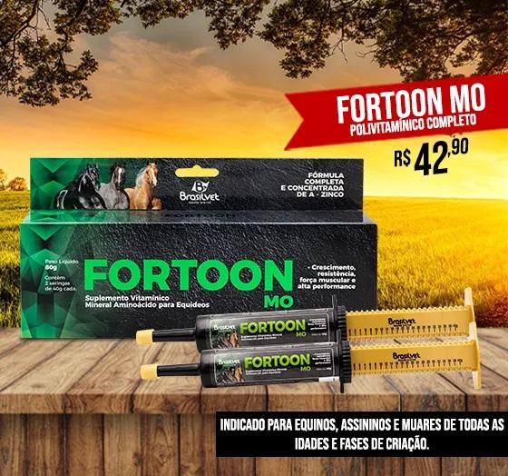 _fortoon_turbo_banner__para_site